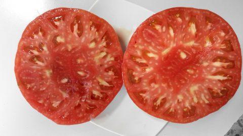 tomate_huevo_toro_hortaliza